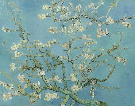 02 Almond Blossom.jpg