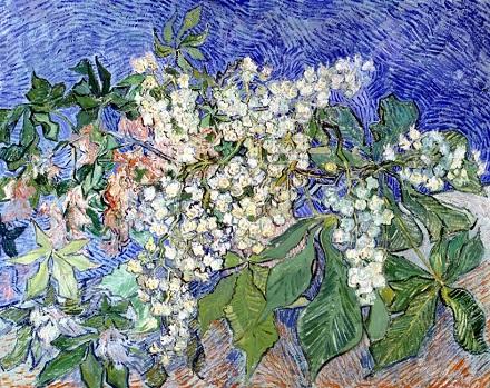 04 花咲くマロニエの枝.jpg
