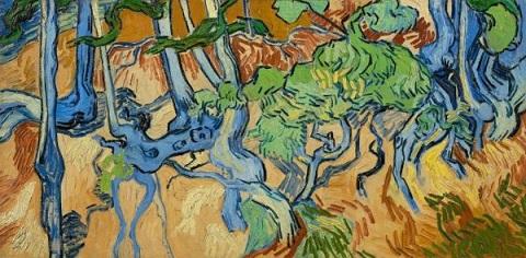 08a 木の幹と根.jpg