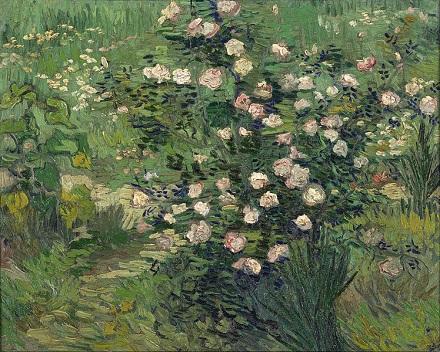 12 Roses.jpg