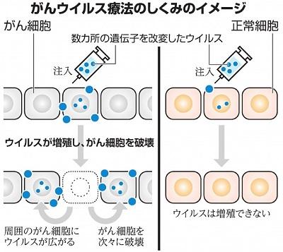 がんのウイルス療法.jpg