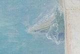 アルマ=タデマ 9:見晴らしのよい場所・ガレー船1.jpg