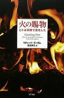 火の賜物.jpg