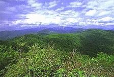 白神山地1.jpg