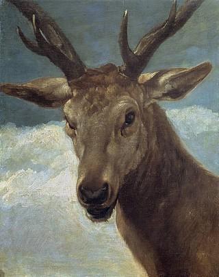 鹿の頭部.jpg