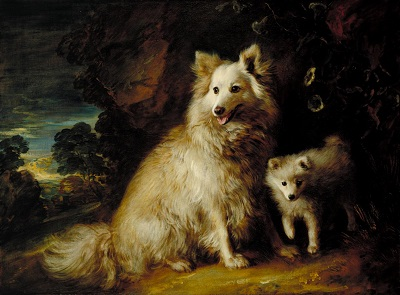 Gainsborough - Pomeranian Bitch and Puppy.jpg
