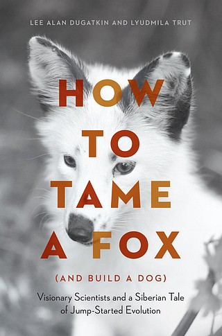 How to Tame a Fox.jpg