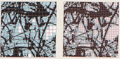 Pollock-3.jpg
