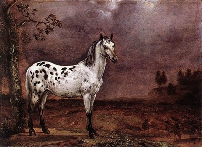 Potter - The Spotted Horse.jpg