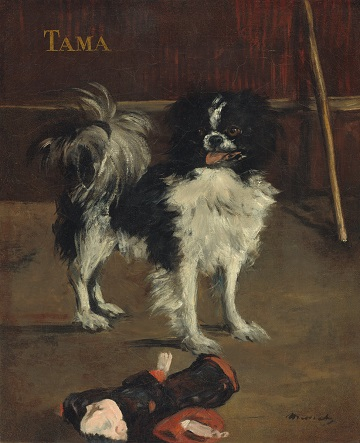 Tama, the Japanese Dog(Manet).jpg