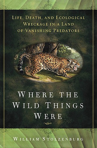 Where the Wild Things Were.jpg