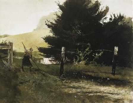 Wyeth 11 矢車草.jpg