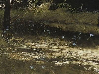 Wyeth 12 矢車草(部分).jpg