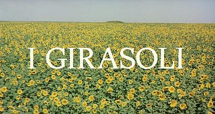 girasoli-hd-movie-title.jpg